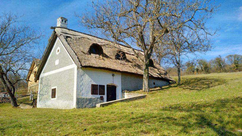 Szőlőhegyi sétáink: Szentantalfa, Szent Balázs hegy felső szakasz